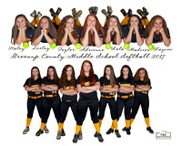 Greenup Co. Middle School Softball 2017 8th Grade